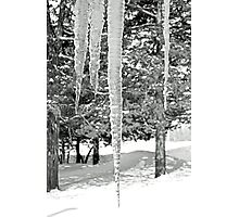 Duffy Home Iced Photographic Print