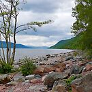 Loch Ness Coast by triciamary