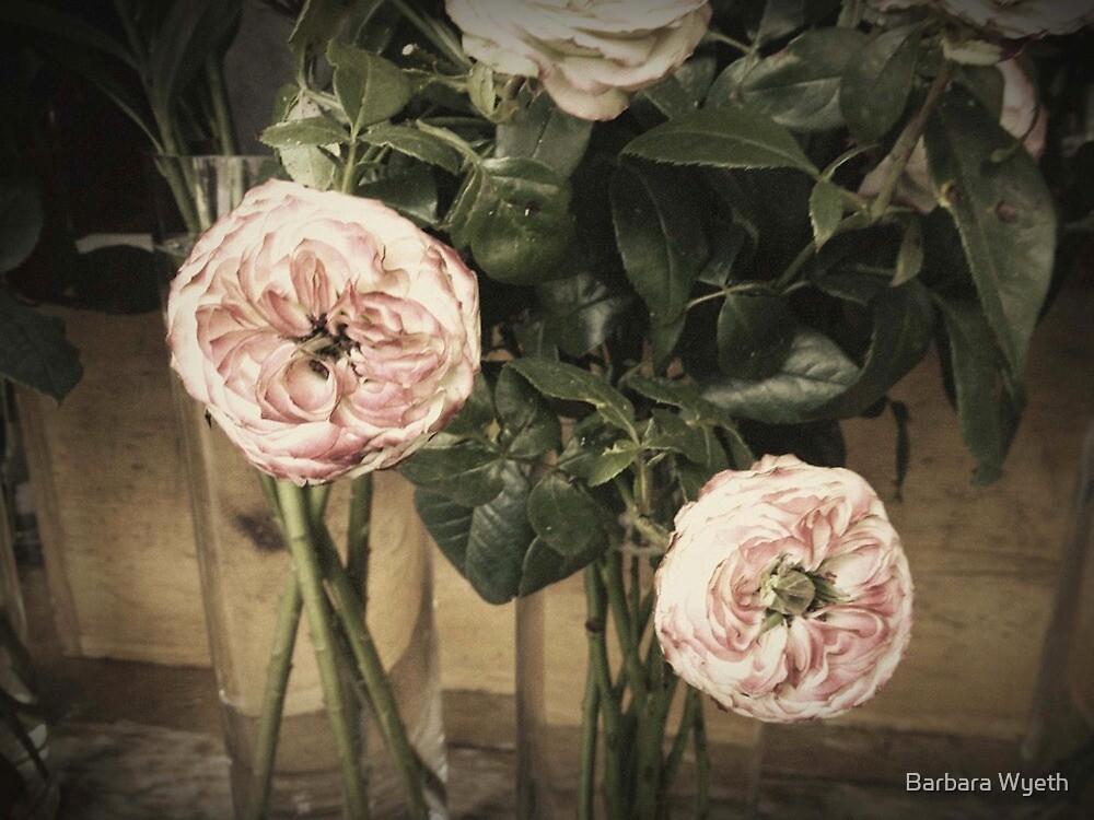 """Antiqued"" Roses by Barbara Wyeth"