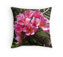 Pink Frangipanis Throw Pillow