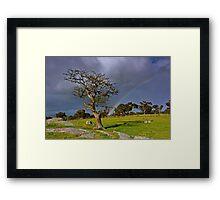 """A Rainbow And The Tree"" Framed Print"