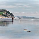 Charmouth Beach 3 by Susie Peek