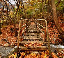 Wooden bridge to the heart of autumn by Hercules Milas