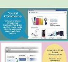 Essential tips on choosing a Shopping Cart Software to build a Ecommerce Website by iqecommerce