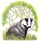 Badger by shiro