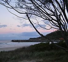 Razorback Lookout at dusk! Evans Head. Nth Coast. N.S.W. by Rita Blom