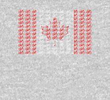 Bike Flag Canada (Small) T-Shirt