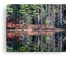 Fishing With Dad Canvas Print