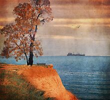 Autumn by the sea by Paula Belle Flores
