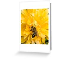 Crab Spider with Bee Greeting Card