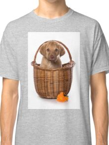 Funny brown puppy retriever Classic T-Shirt