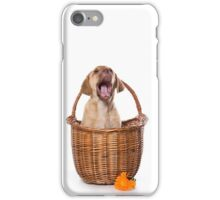 Funny brown puppy retriever iPhone Case/Skin