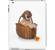 Funny brown puppy retriever iPad Case/Skin