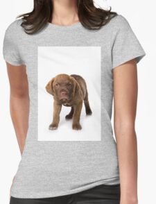 Funny brown puppy retriever Womens Fitted T-Shirt