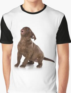 Funny brown puppy retriever Graphic T-Shirt