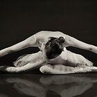 Swan Like by Andrew Jones
