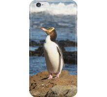 Yellow-eyed Penguin iPhone Case/Skin