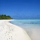 Deserted beach - Aitutaki by Nicola Barnard