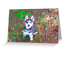 Siberian Husky Puppy: You Have My Attention Greeting Card