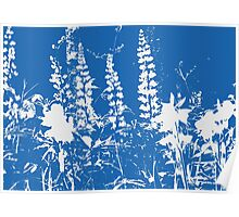 Silhoutte of Flowers in Blue and White Poster