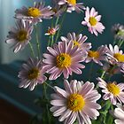 Pink Mums 2013 (#1) by goddarb