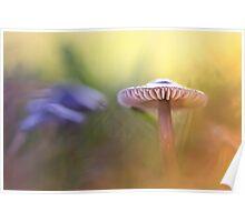 Mystic Mushroom.... Poster