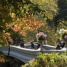 Central Park Bridge, Autumn Colors, New York City by lenspiro