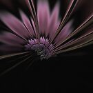 Fractal Flower by Glen Allen