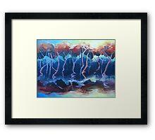 Sunset mangroves Framed Print