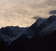 Showy Sunrise by Kathi Arnell