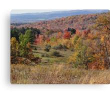 Why I love Fall 4 Canvas Print