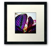 Neon Purple Plant (surreal) Framed Print