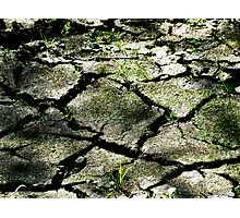 Cracked Earth  Photographic Print