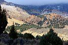 El Rae Canyon by Arla M. Ruggles