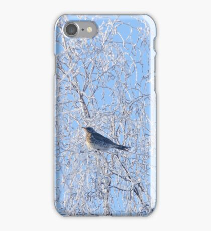 Winter Patterns iPhone Case/Skin