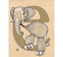 E is for ELEPHANT Photographic Print
