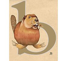 B is for BEAVER Photographic Print