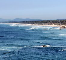 View south from Port Macquarie by Kathie Nichols