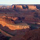 Dead Horse Point - Canyonland Utah by Barbara Burkhardt