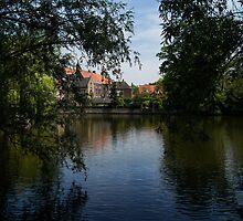 A Glimpse Through the Trees - Bruges, Belgium by Georgia Mizuleva