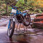 Bultaco Sherpa Falls by neil sturgeon