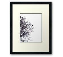Skeleton Sky Framed Print
