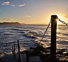 Good Morning From Lyme Regis by Susie Peek