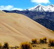 Great Sand Dunes National Park by Nathan Jekich