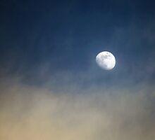 Moonlighting by John Dalkin