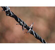 Simplistic Metal Design of Traditional Prairie Fencing Photographic Print