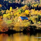 Autumn on the Kennebecasis by Kathleen Daley
