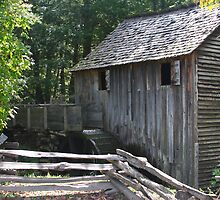 Grist Mill Color - Cades Cove Tennessee by Tony Wilder