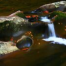 LITTLE RIVER by Chuck Wickham