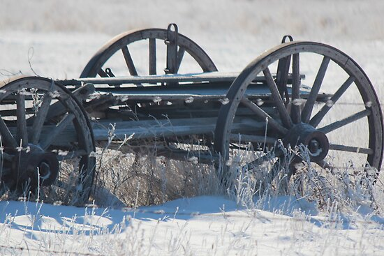 Tracing the History of Farm Equipment in Winter by Brenda Roy